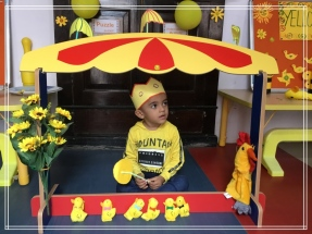 Yellow_Day_Celebration7